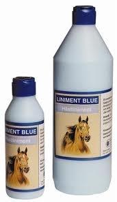 BIOFARMAB Eclipse Blue - �el rozgrzewaj�cy 1000 ml